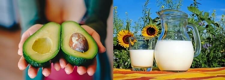 aguacate y leche